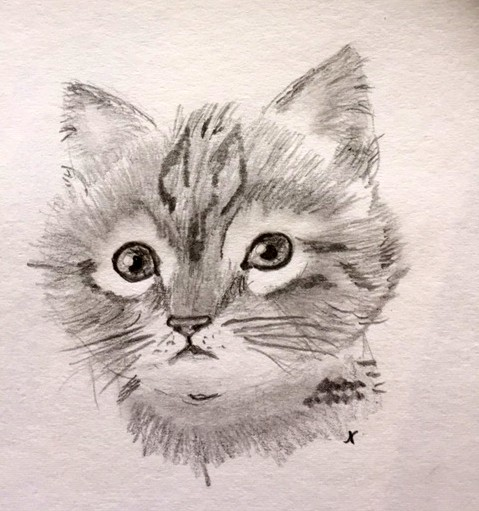 00073-Picturale-a-sketch-a-day-Nel