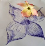 00013-Picturale-a-sketch-a-dayJenny-d-K