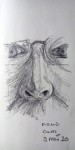 00018-Picturale-a-sketch-a-day-Charlotte