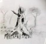 00034-Picturale-a-sketch-a-day-Nel