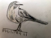 00041-Picturale-a-sketch-a-day-Jane
