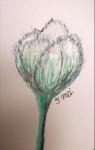 00047-Picturale-a-sketch-a-day-Jenny-d-K
