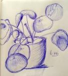 00057-Picturale-a-sketch-a-day-Jenny-d-K