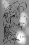 00071-Picturale-a-sketch-a-day-Jenny-d-K