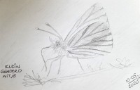 00086-Picturale-a-sketch-a-day-Christakopie