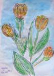 00089-Picturale-a-sketch-a-day-Jenny-v-N