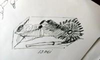 00118-Picturale-a-sketch-a-day-Jenny-d-K