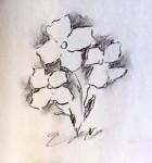 00163-Picturale-a-sketch-a-day-Nel
