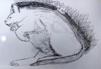 00176-Picturale-a-sketch-a-day-Jenny-d-K