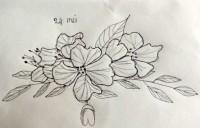00209-Picturale-a-sketch-a-day-Jenny-d-K