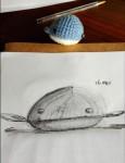 00210-Picturale-a-sketch-a-day-Jenny-d-K