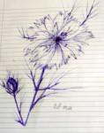 00227-Picturale-a-sketch-a-day-Jenny-d-k
