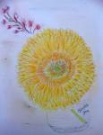 00239-Picturale-a-sketch-a-day-Jenny-v-N